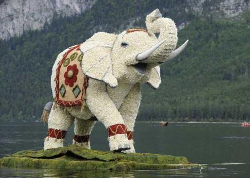 Narzissenfest-Elefant_high