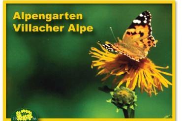 1373457614-Ktn_Villach_Alpengarten_Villacher_Alpe_1