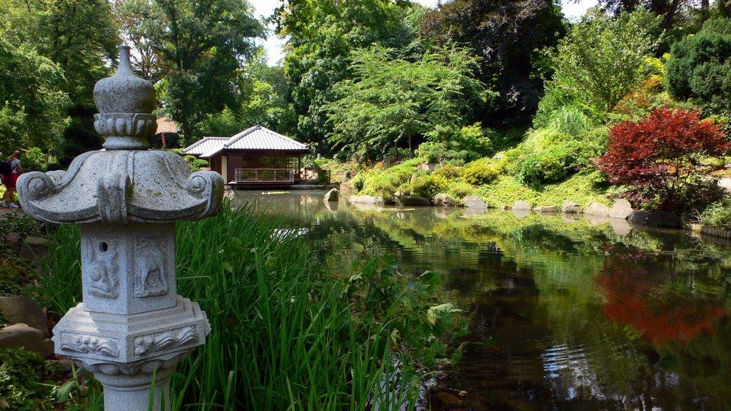 الحديقة اليابانية كايزرسلوترن