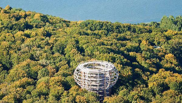 درب الأشجار الخضراء في جزيرة روغنالالمانية