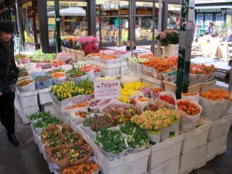 Vienna_Naschmarkt_Tulips-600x450