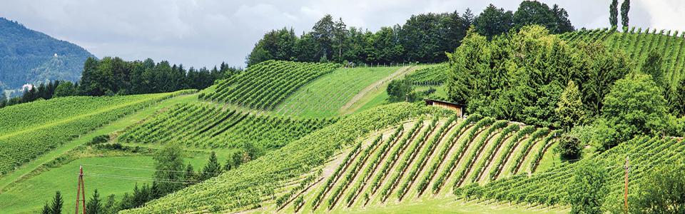Steiermark1
