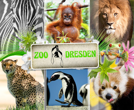 dresden-zoo_1