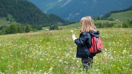 Alpe-di-Siusi_Prato-fiorito_GiovanniB_DSF0101