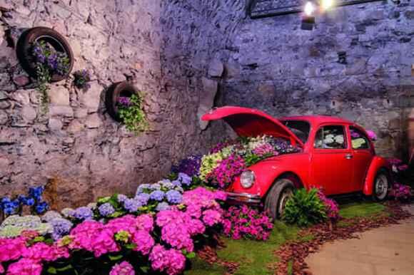 Girona-temps-de-flors-10