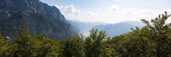 Baumwipfelpfad-Salzkammergut-Ferienregion-Traunsee84954dc9-6e4e3d30@1920w