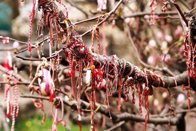martenitsa_magnolia
