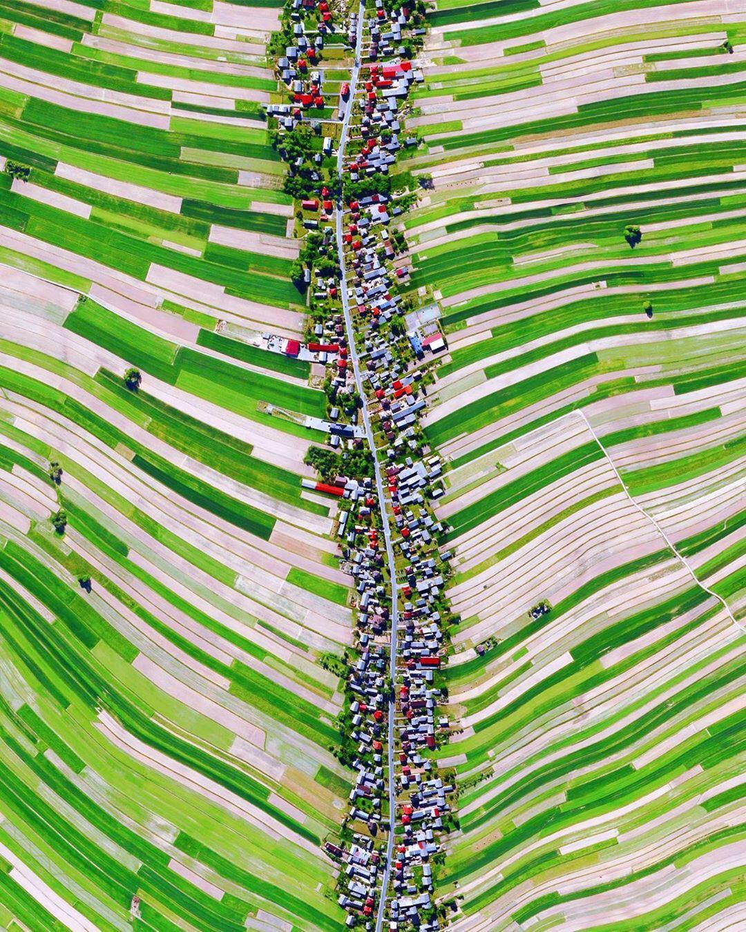 قرية الحقول الخضراء